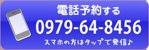 電話:0979-64-8456