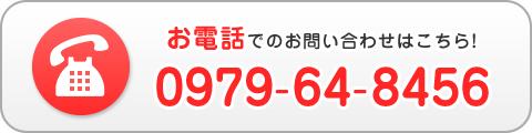 電話番号:0979-64-8456